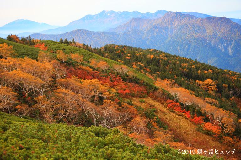 紅葉の長塀尾根から望む御嶽山、乗鞍岳