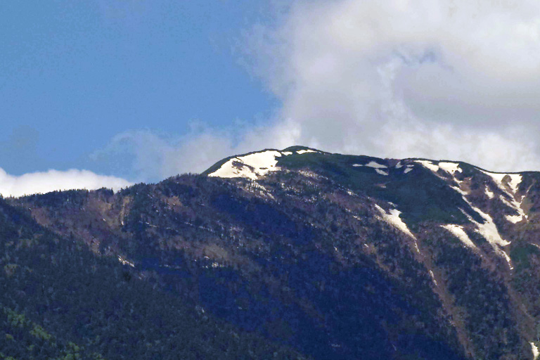山頂直下に現れた「白い蝶」の雪形